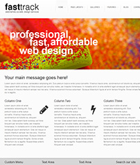 Custom Website Design FastTrack Template